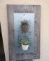 augredupinceau_planche murale_aimantée_plantes 2_compressed
