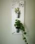 Support mural en bois pour jolies plantes